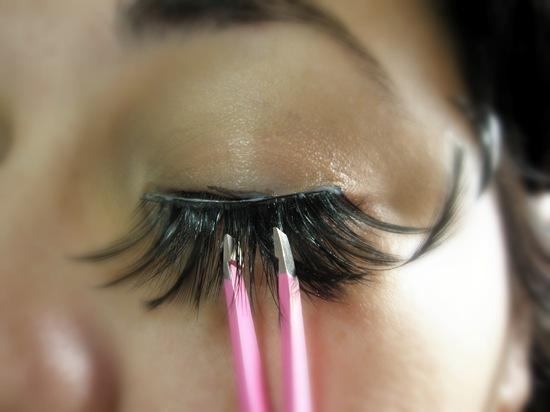 apply elise lashes