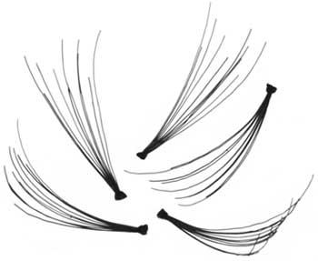 eyelure (eylure) individual lashes